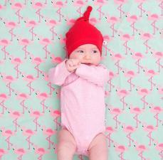 Мешок для хранение игрушек фламинго playandgo