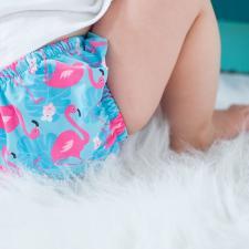 Подгузник для плавания zoocchini фламинго