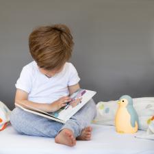 Мальчик читает книгу а рядом ночник пэм синий