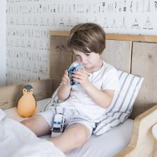 Ребёнок в кровате и zazu пингвин пэм серый