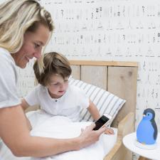Включение bluetooth на пингвине zazu пэм серый