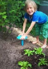 Играем на огороде с quut triplet