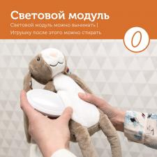 кролик бо с автоотключением